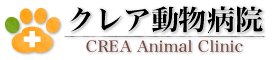 優しいお兄ちゃんと・・・♡|天王寺区 大阪上本町 クレア動物病院